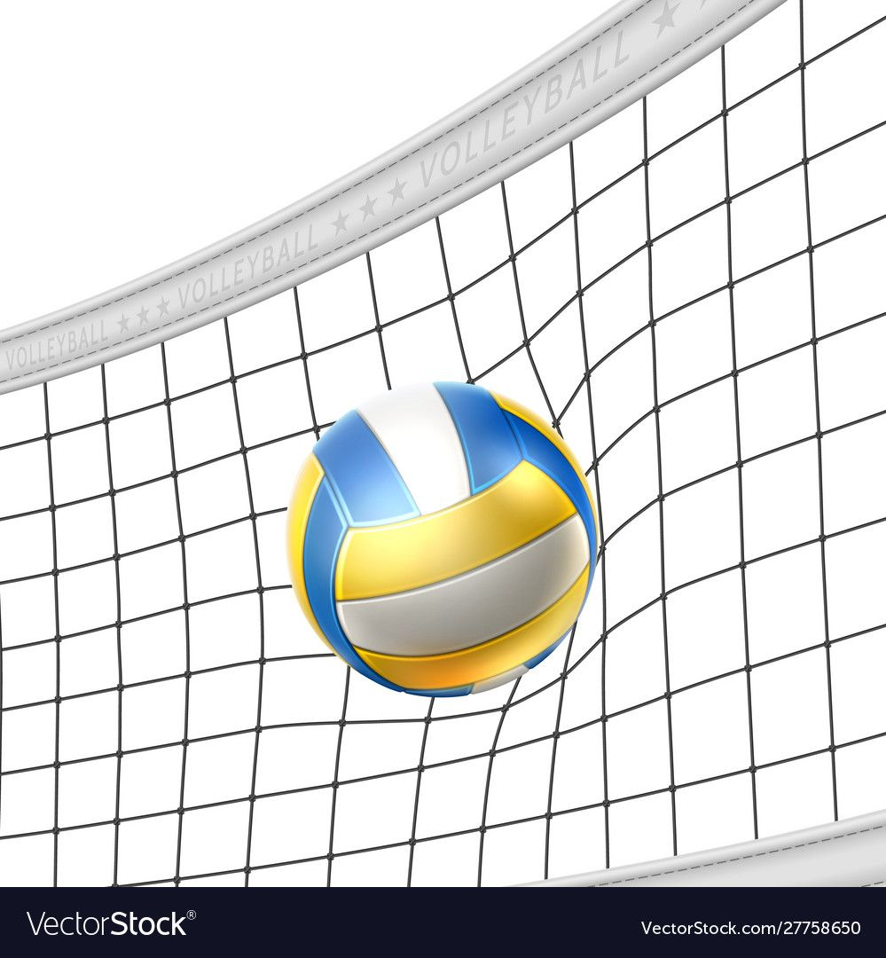 Realistic Beach Volley Ball In Net Isolated Vector Image On Vectorstock Volleyball Backgrounds Volleyball Volley