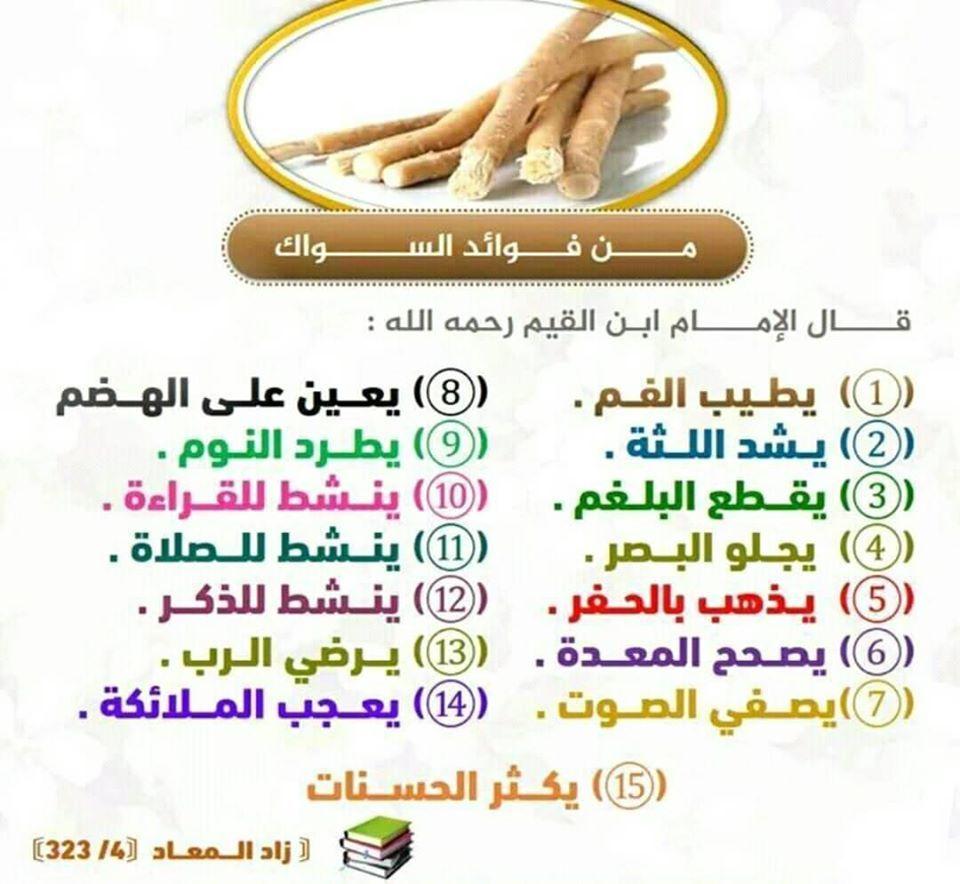 السواك منافعه كثيرة جدا سبحان الله العظيم 4 H