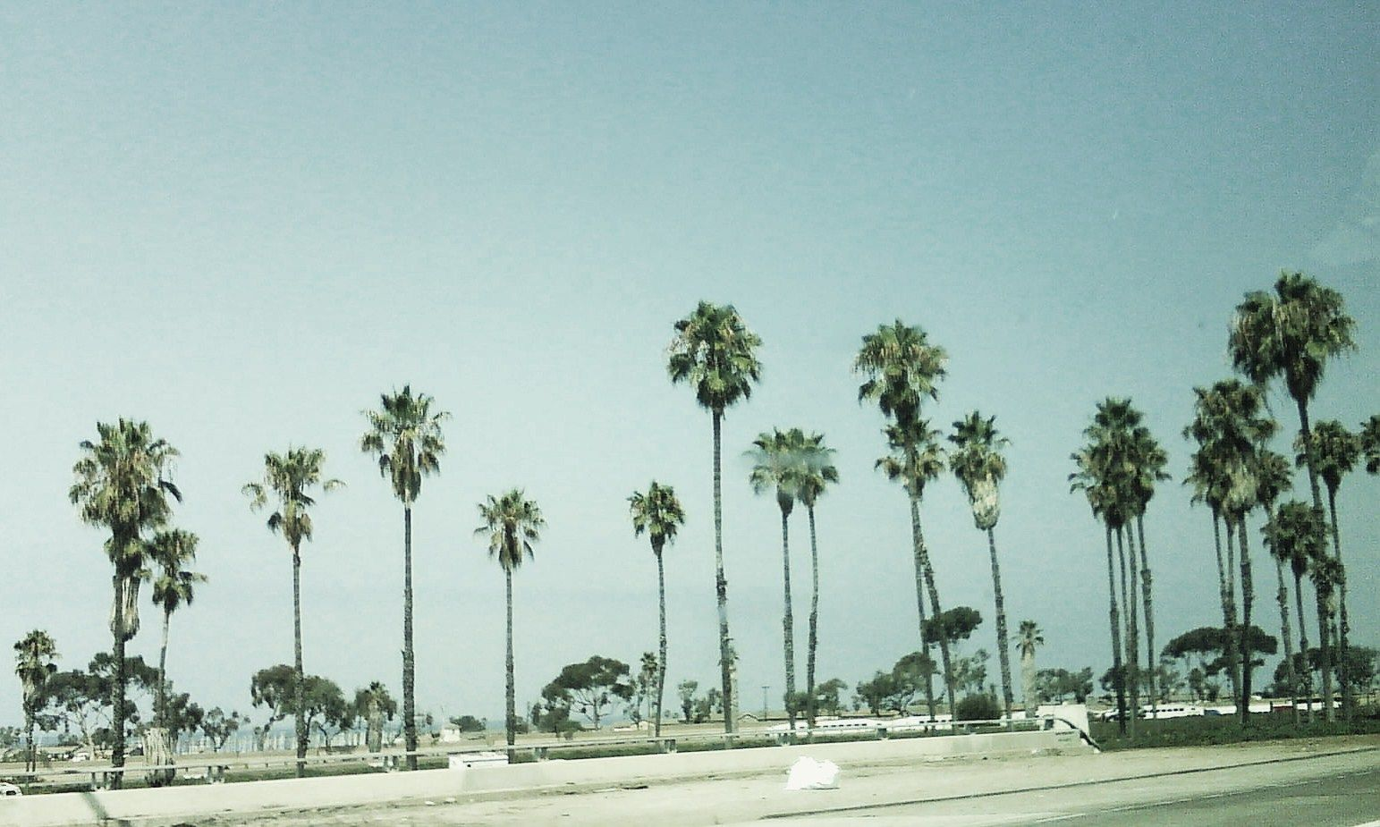 Beach With Palm Trees Tumblr Hd Pictures 4 HD Wallpapers