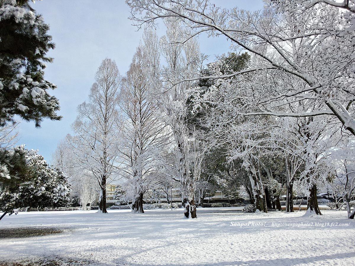 「冬 画像 フリー」の画像検索結果