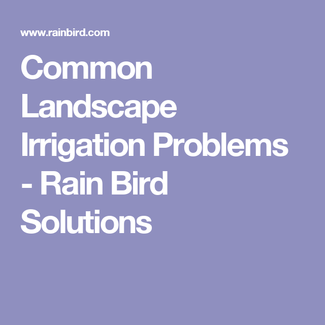 Common Landscape Irrigation Problems Rain Bird Solutions Rain Bird Irrigation System Design Landscape Problems