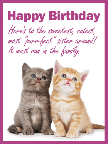 To My Purrfect Sister Happy Birthday Card These Little Kitties