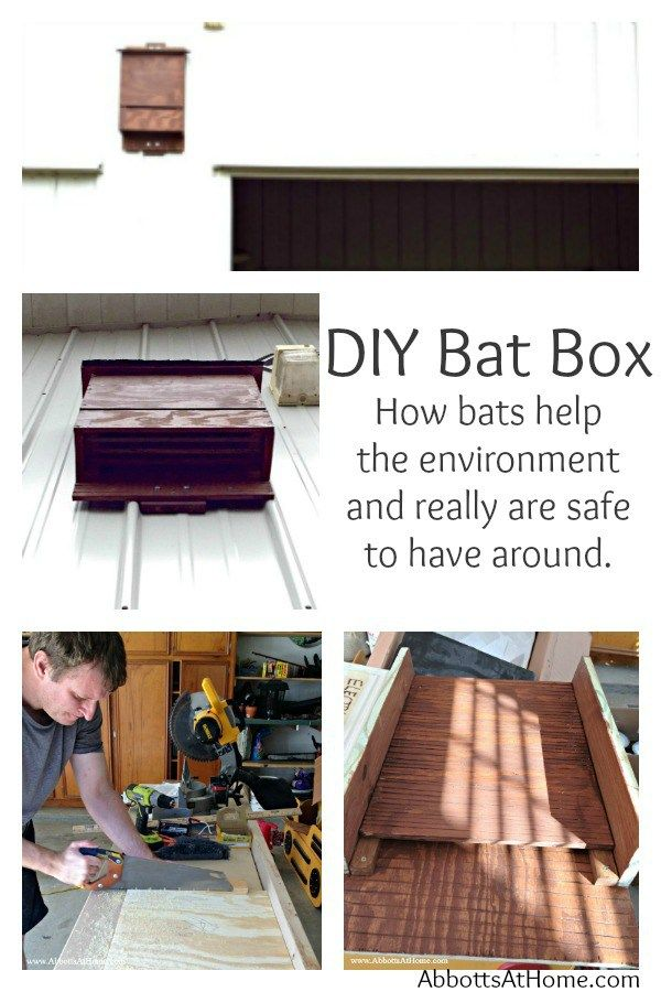 Diy Bat Box 4 Chamber Nursery Attract Bats And Conservancy Fact Eat Mosquitoes0