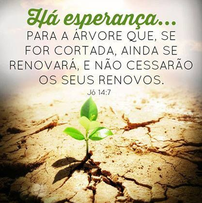 Jo 14 7 Citacoes Biblicas Tudo Sobre Deus Atividades Da Biblia