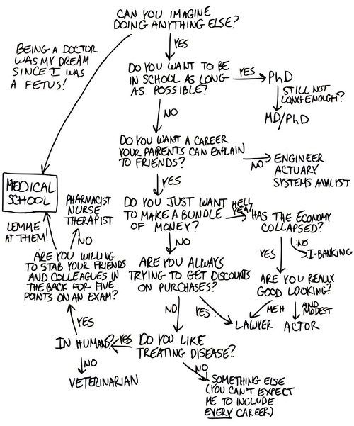 Deciding To Go To Med School Or Do Something Else This Handy Dandy