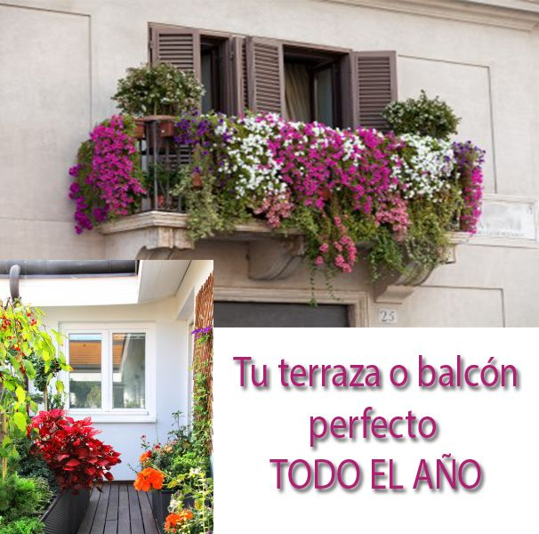 Terraza ideas pinterest decoraci n de escalera for Terraza plantas decoracion