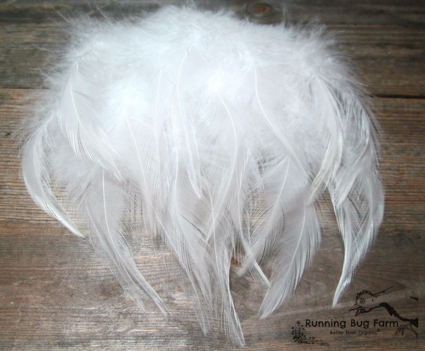 "White Saddle Feathers Real Bird Feather Loose Natural Eco Feather Assortment White Cochin Rooster Plumes Eco Organic 15 @ 4"" - 4.5"" / WC9 by RunningBugFarm on Etsy https://www.etsy.com/transaction/1065186626"