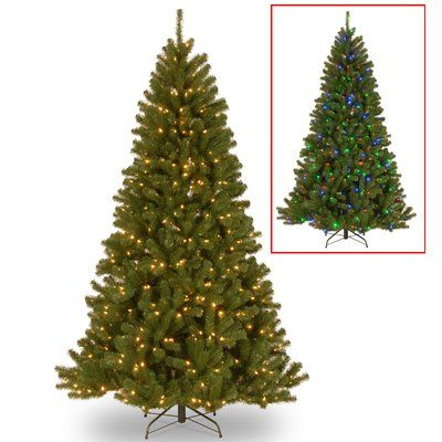 Darby Home Co 75\u0027 Green Spruce Artificial Christmas Tree with 550
