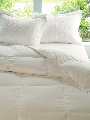 Lands End Essential Goose Down Comforter Down Comforter Trendy