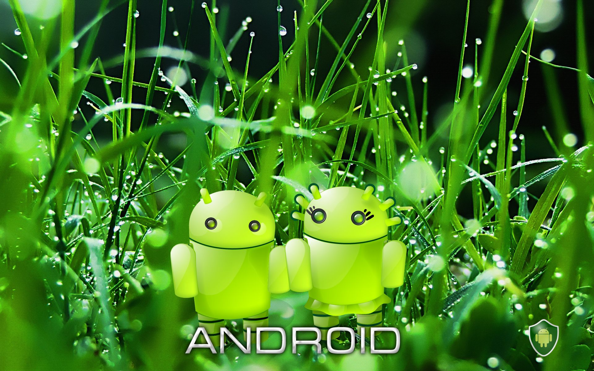 high definition green android wallpaper for pc