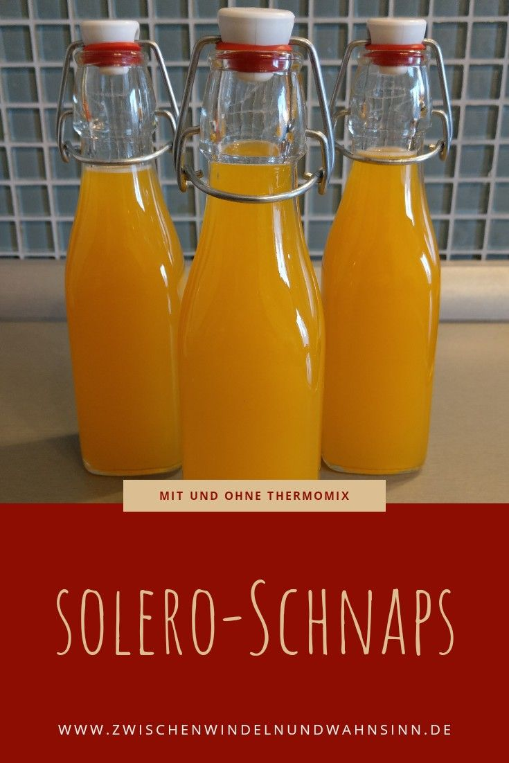 Solero-Schnaps aus dem Thermomix
