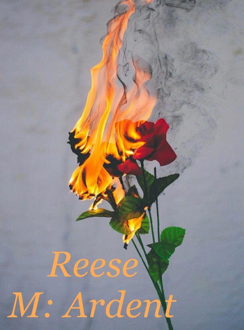 Welsh Origin Meaning Ardent Similar Name Is Reece Red Roses Wallpaper Burning Flowers Sunflower Iphone Wallpaper