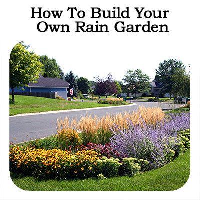 How To Build Your Own Rain Garden Rain Garden Landscape Rain