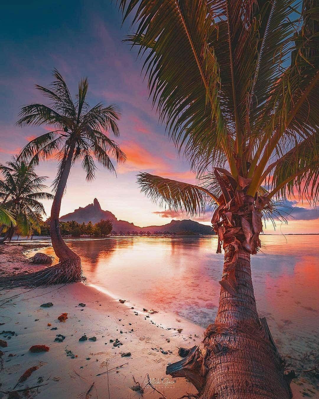 Sol uppgång stranden dating Lacey Schwimmer och Kyle Massey dating