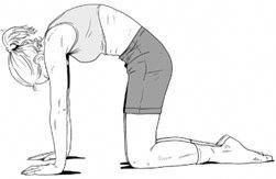 pilates  scoliosis exercises scoliosis exercise
