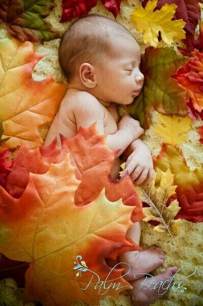 November Newborn Pictures