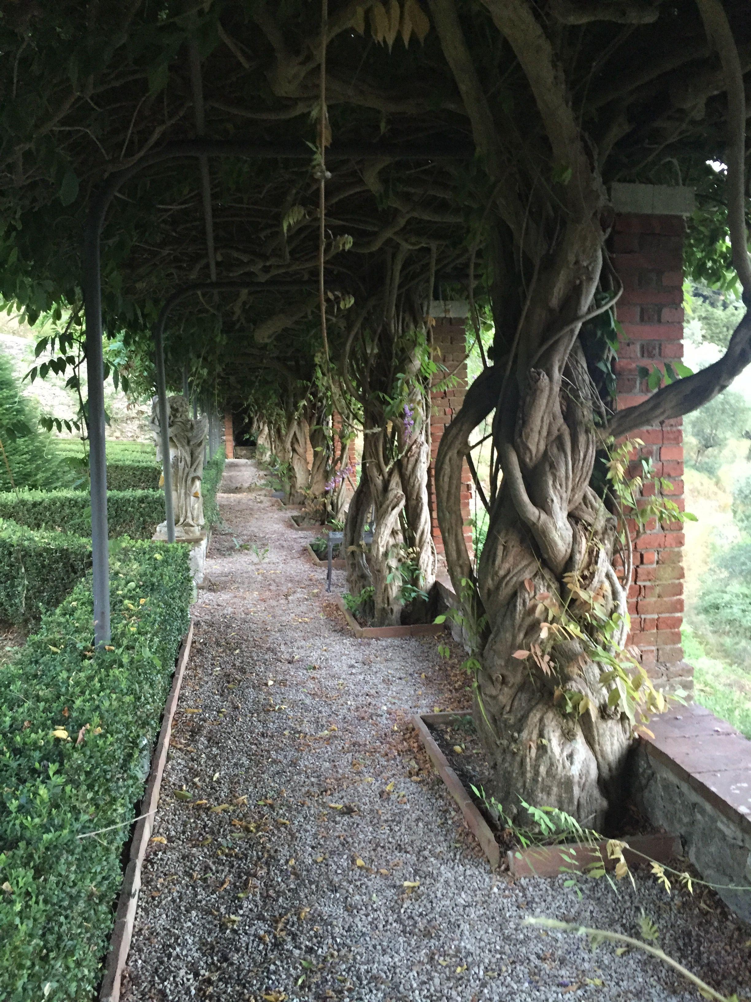 Toscana Massarosa Villa Paolina di Compignano