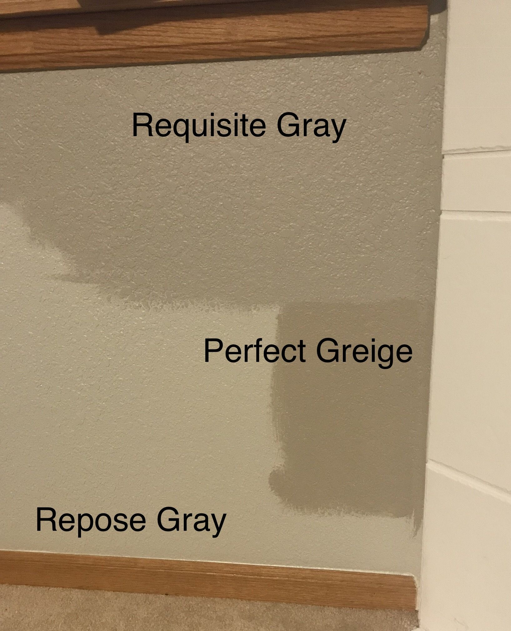 Best Sherwin Williams Requisite Gray Perfect Griege Repose 640 x 480