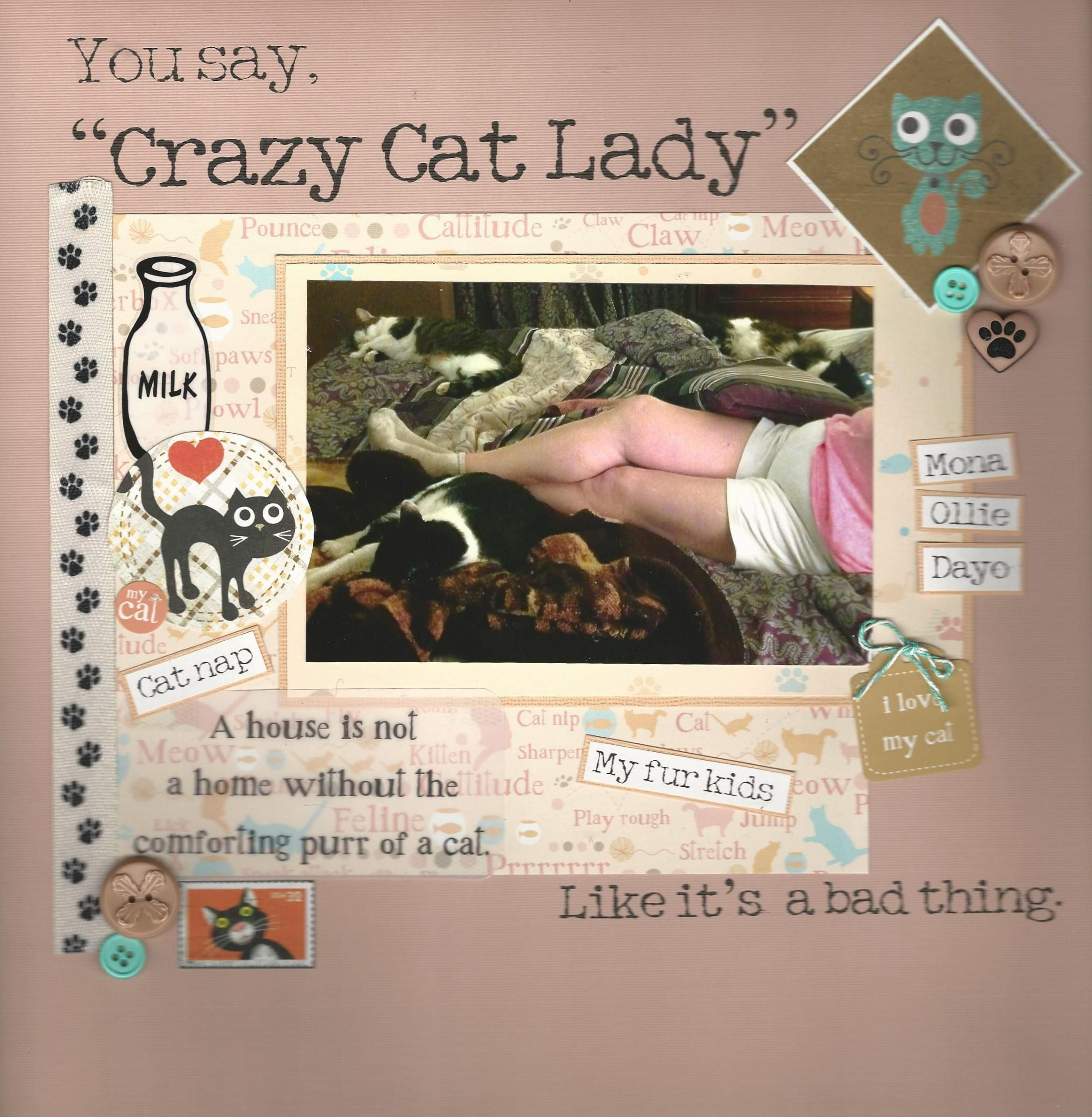 Crazy Cat Lady Scrapbook Layout Scrapbook Page Completed Scrapbook