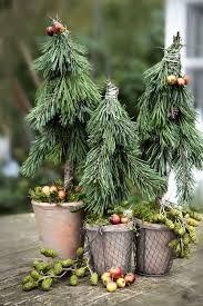 Relaterede Billeder Med Billeder Udendors Julepynt Blomsterarrangementer