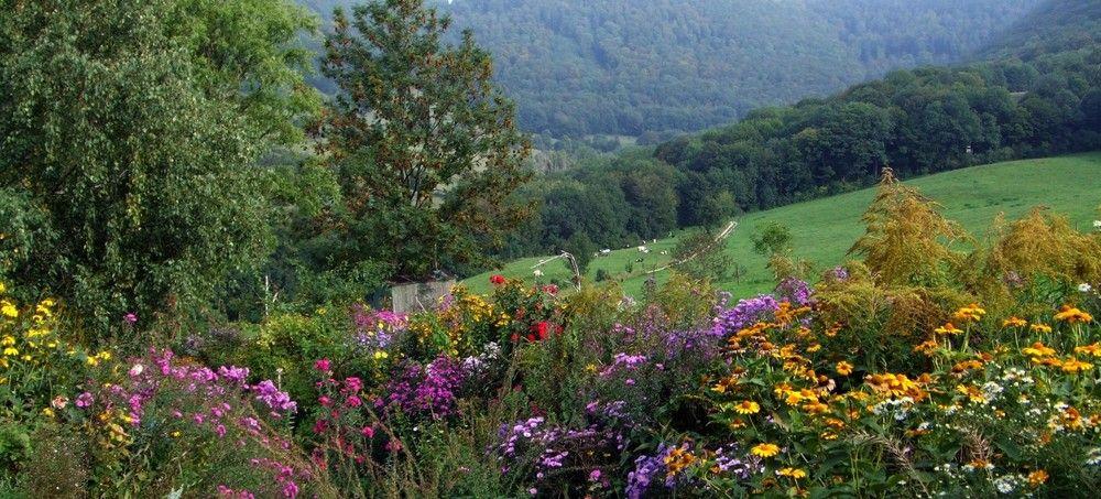 Ein Bauerngarten