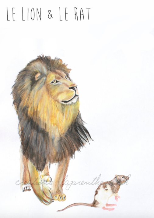 Dessin Le Lion Et Le Rat : dessin, Ideas, Lion,, Fables,