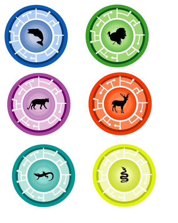 photograph about Wild Kratts Creature Power Discs Printable named Wild Kratts Creature Electric power Discs Printable Wild Kratts
