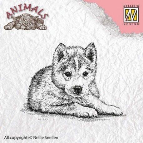 Tampon dessin chien chiot husky dessin pinterest dog - Animal dessin ...