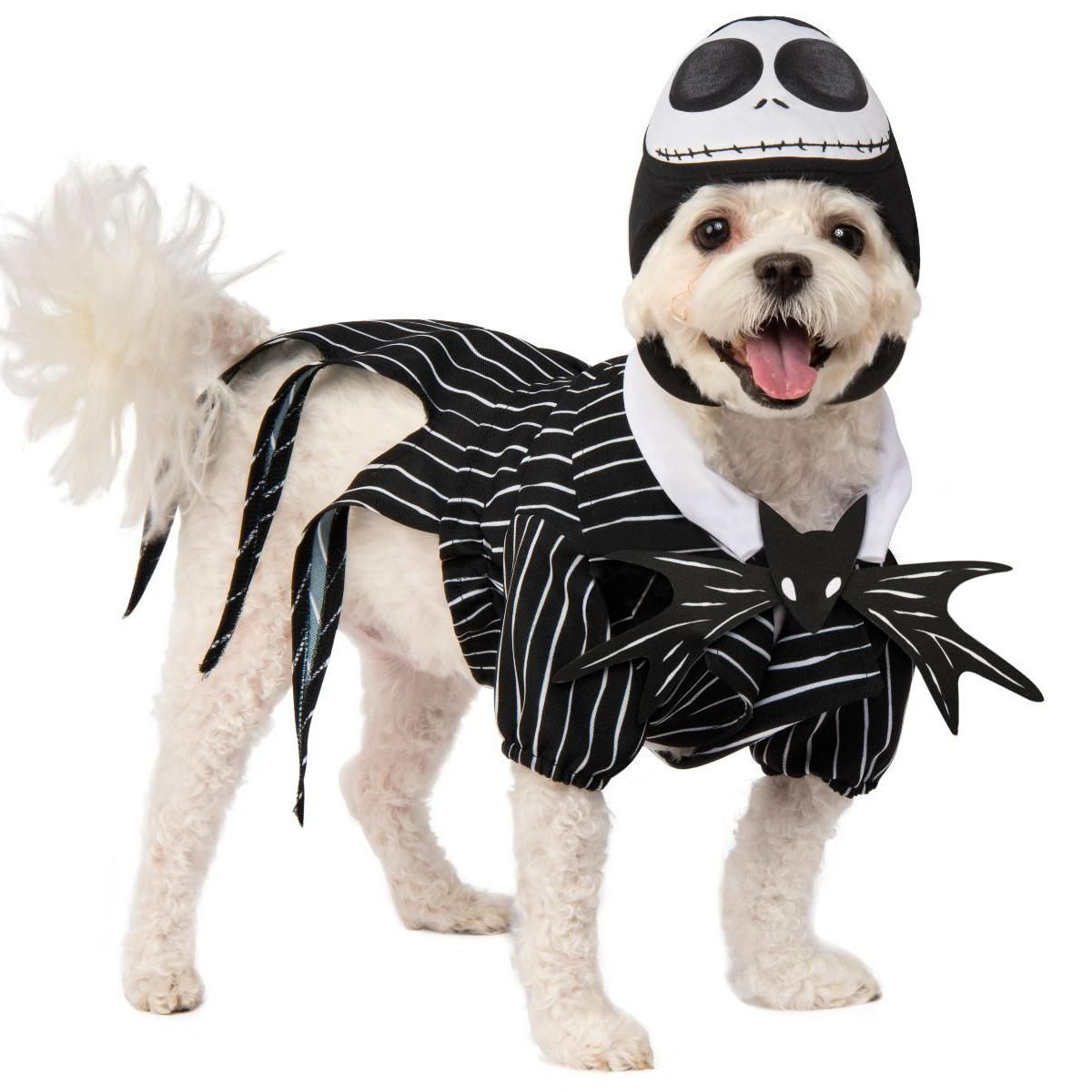 Beetlejuice Dog Fancy Dress Halloween Tim Burton Ghost Puppy Animal Pet Costume