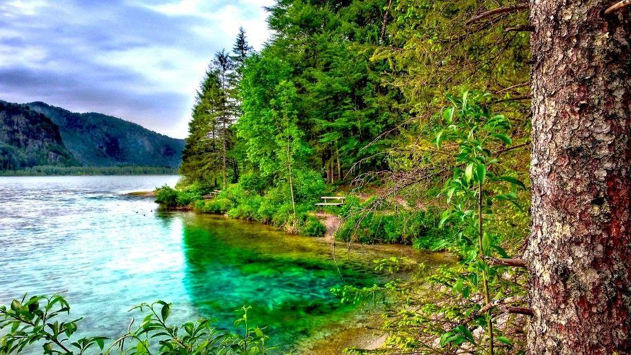 Nature Landscape Tree River Mountain Pine Forest Mountains Cloudy Sky Hd Desktop Wallpaper Foret Arbre Grotte