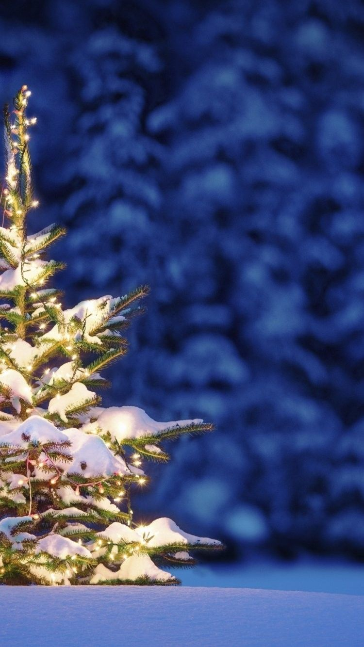 Follow Littlemissperfect For More Beautiful Wallpapers Christmas Background Christmas Wallpaper