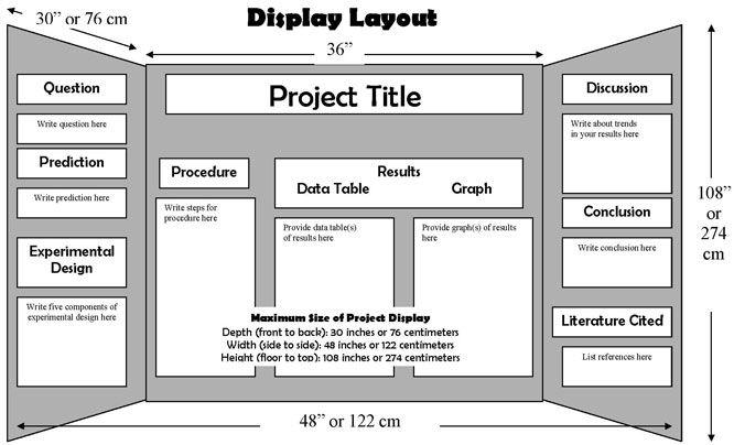 science fair tri fold layout