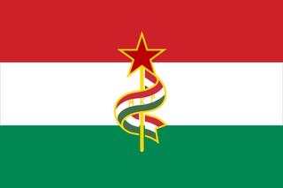 Communist Hungary Flag Vexillology Hungary Flag Flag Art Flag