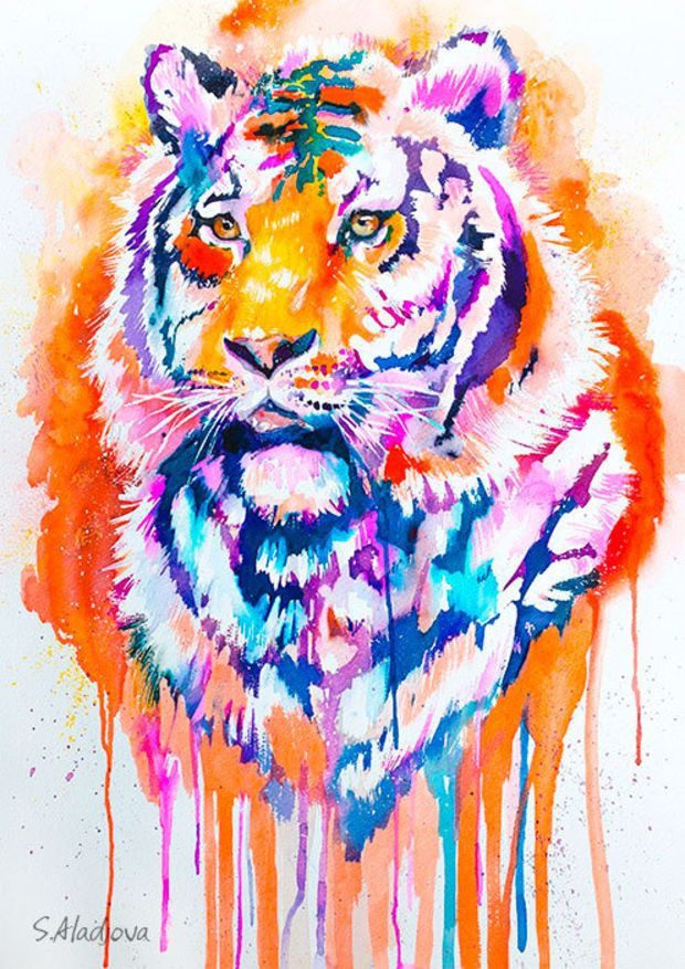 Tiger Watercolor Painting Print Animal Illustration Animal