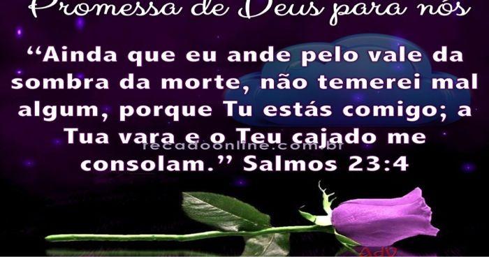 Deus Esta Comigo Com Imagens Salmos Promessas De Deus Salmo 23