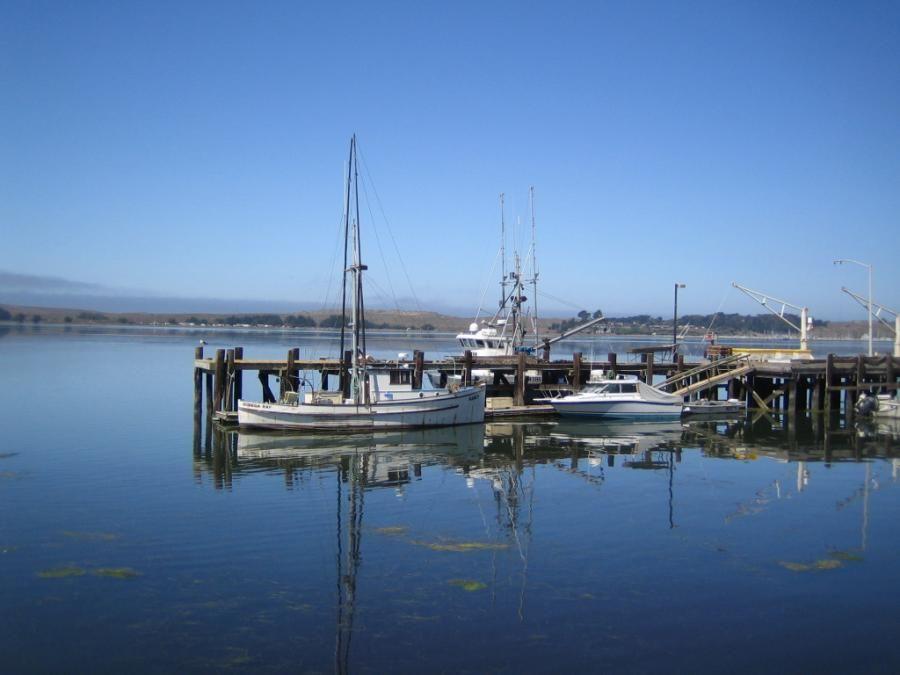 Bodega bay california pixdaus california beauty for Fort bragg fishing charters