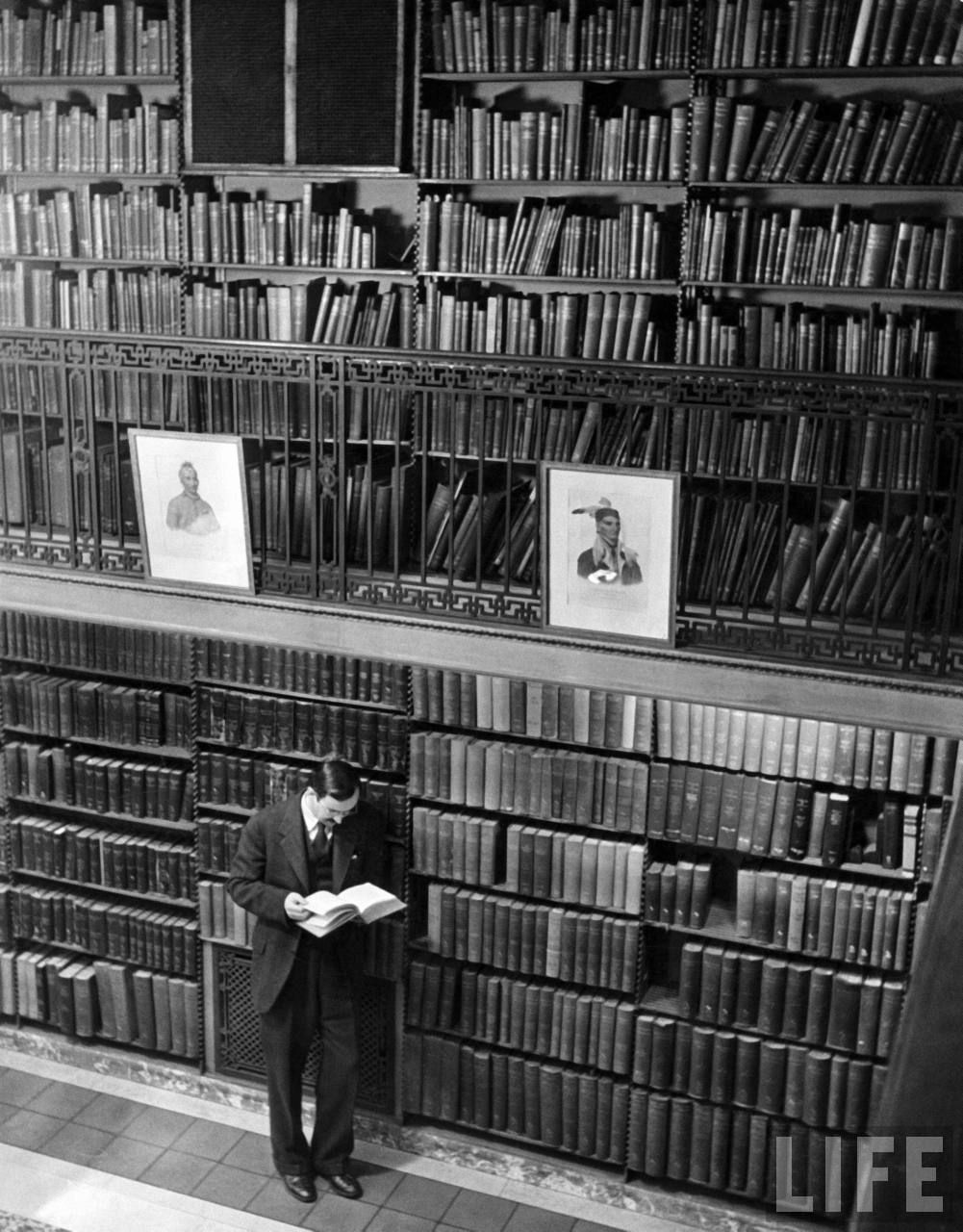 Author Hoffman Reynolds Hays reading book among shelves in American History Room in New York Public Library, 1944. Photo By Alfred Eisenstaedt. LIFE. Hays was a poet, translator, novelist and playwright, an historian of anthropology and zoology, and a teacher.