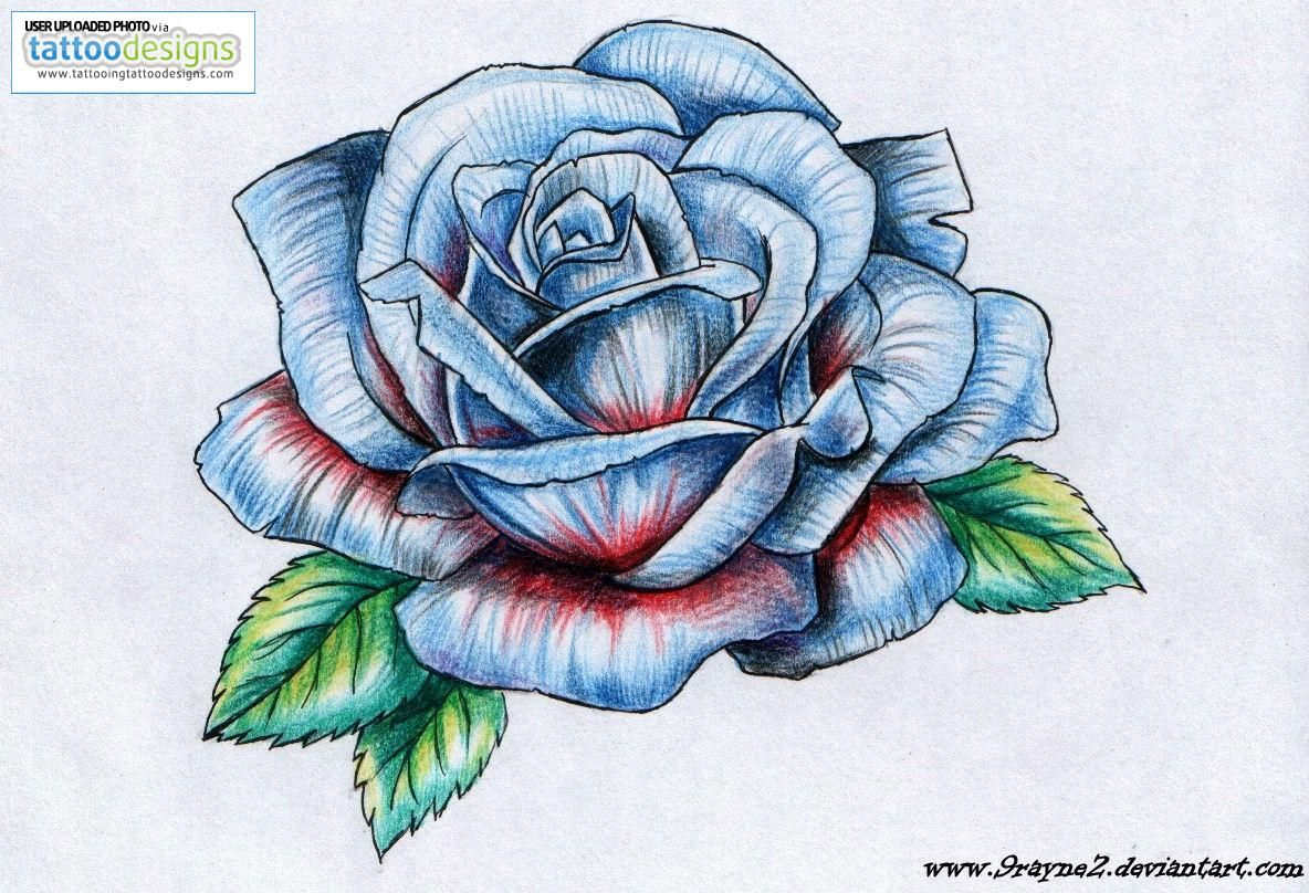 Drawings Of Roses And Butterflies Rose Tattoo Drawings Dllop