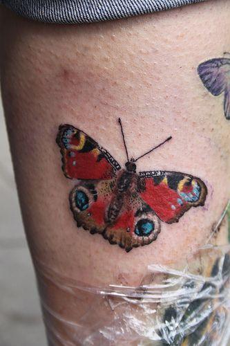 peacock butterfly tattoomirek vel stotker