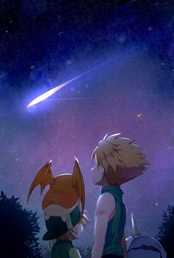 Digimon Adventure: Matt and TK