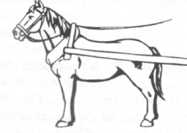 Harness for Horses - Age of Division; circa 220