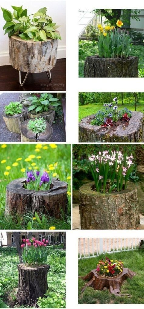 25 Great Ideas With Tree Trunks That Will Originaly Upgrade Your Garden