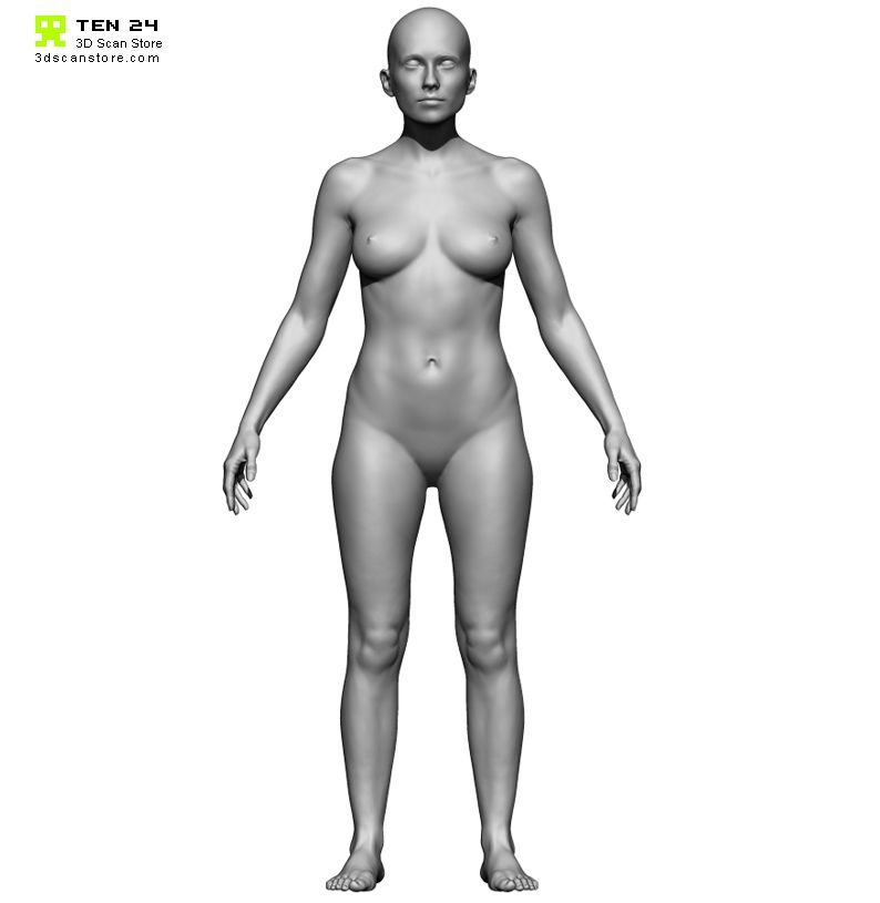 female anatomy 3D scan - symmetrical front - 3D Scan Store/Ten 24 ...