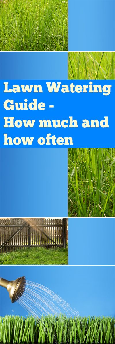 Lawn Watering Guide How Much And How Often Landscaping Pinterest Lawn Lawn Care And