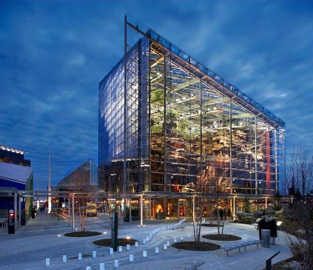 National aquarium in baltimore maryland favorite places for Maryland freshwater fish