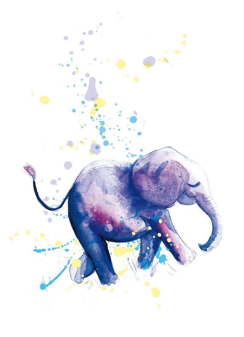 Illustration Aquarelle Elephant Dessin Elephant Illustration