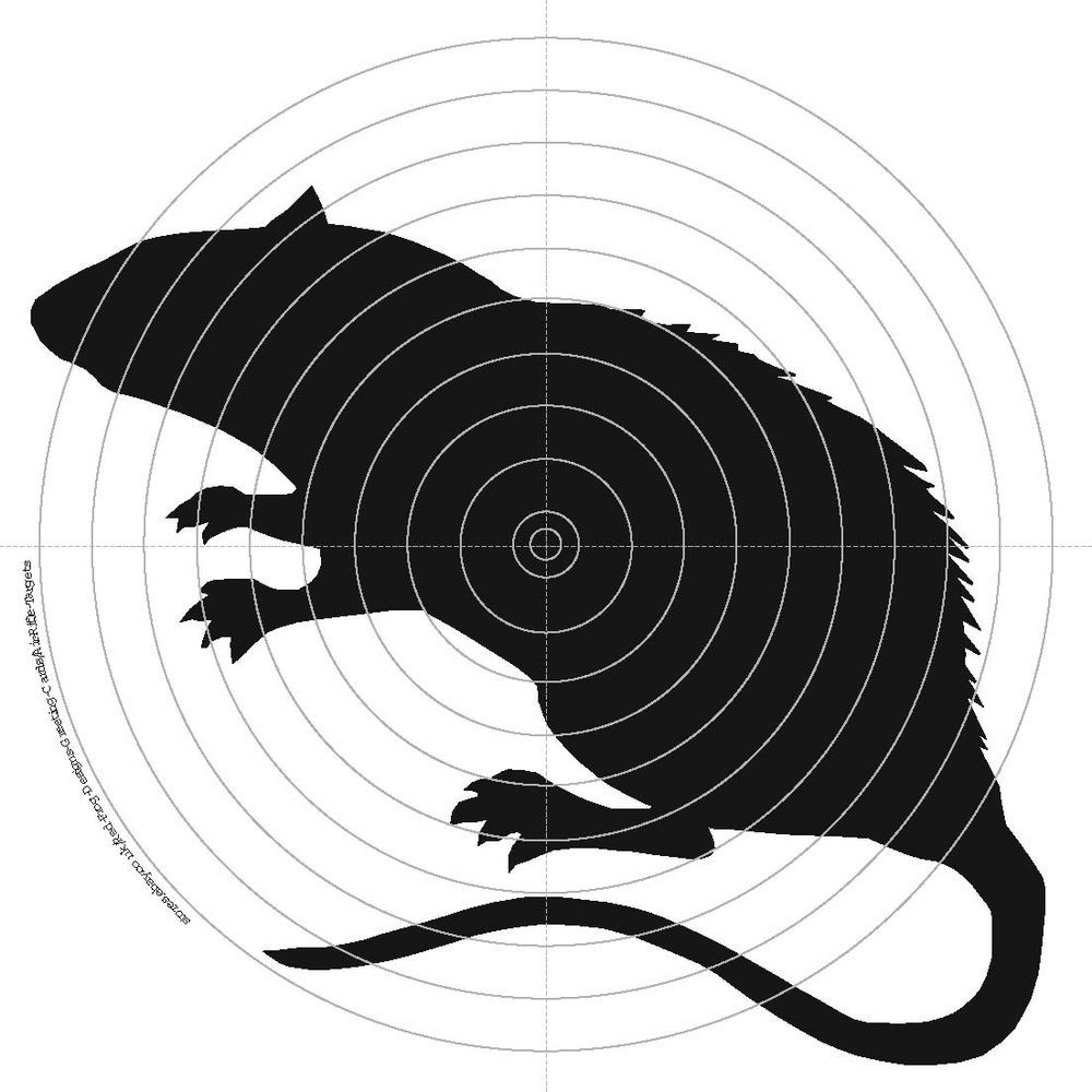 Shooting Rabbits In Colorado: Details About 100 X 14cm Air Rifle Targets Rat Rabbit