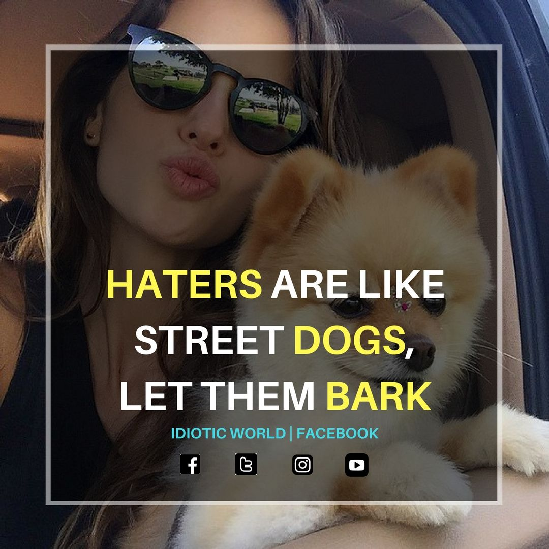 This Is Great About Haters Which Are All Around Us Attitude Quotes Reality Quotes Badass Quotes