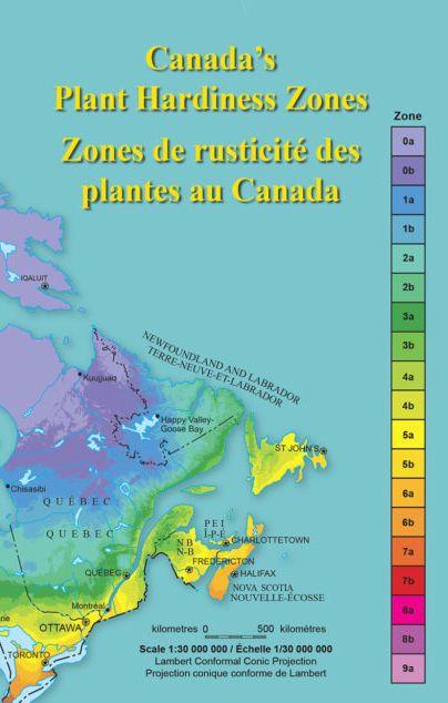 e76b87e78764359caf8e524f0309a1ea - What Zone Is Ottawa In For Gardening