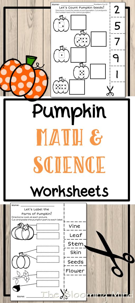 Pumpkin Math and Science Worksheets {No Prep} | Pumpkin life cycle ...